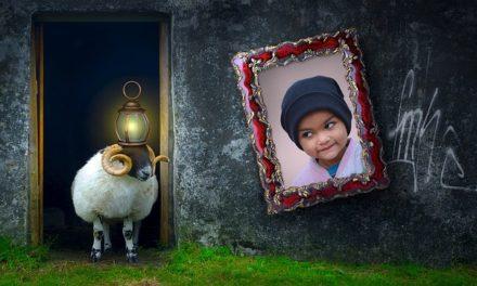 Riparare le immagini danneggiate: come salvare la decorazione della parete