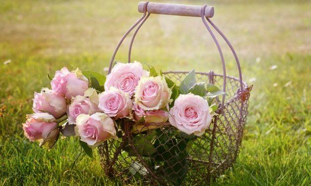 Come giocare: Legare un mazzo di fiori