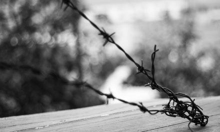 Costruzione del confine con il vicino: questo deve essere osservato