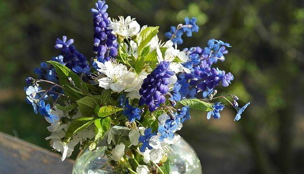 Mantenere i girasoli freschi nel vaso più a lungo