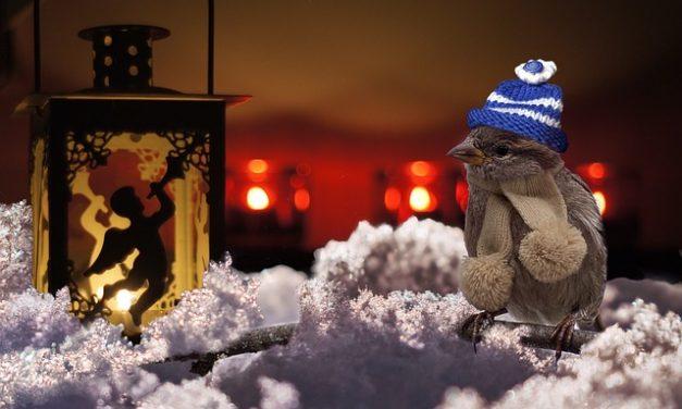Natale: l'illuminazione funziona per voi