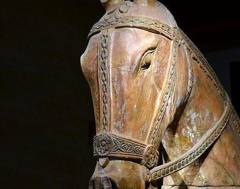 Costruire da soli le stalle dei cavalli: bisogna tenere a mente questo