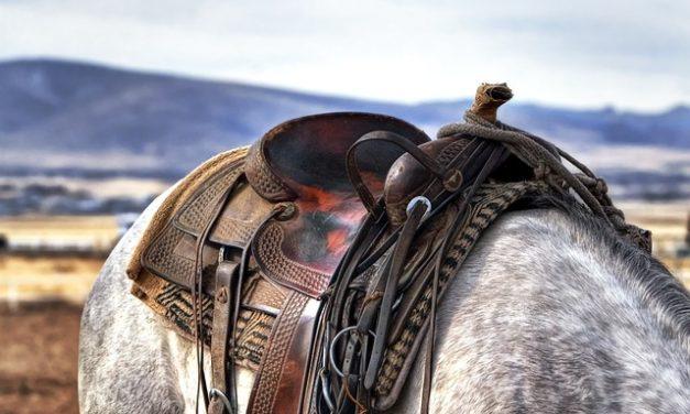 Salita equestre: come riuscire